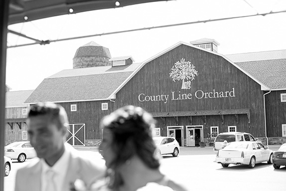 county-line-orchard-wedding-hobart-9