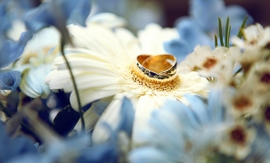 gold wedding bands on flower