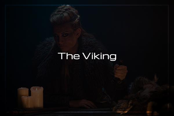 viking blog feature 2